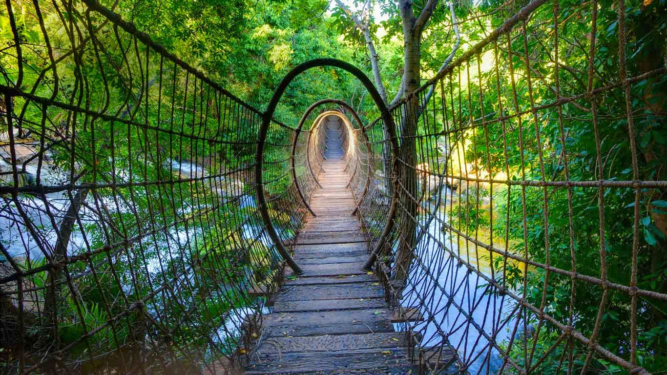 Sway Bridge At The Palace Of The Lost City North West Province South Africa 20150503